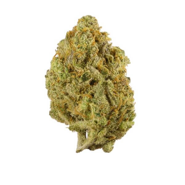 buy lemon haze strain online , buy lemon haze online, buy leomon haze weed online, order lemon haze today, order lemon haze online , order lemon haze near me