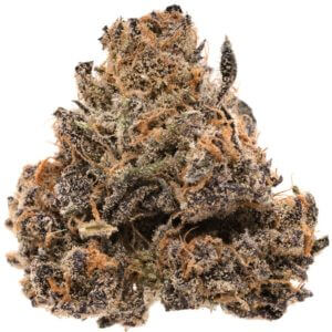Buy Cherry pie strain online, order cherry pie strain online in the usa, order cherry pie weed strain today in Australia, cherry pie marijuana strain, cherry pie pot for sale