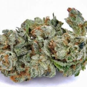 buy larry og strain online, order larry OG online at TSCK, ORDER LARRY OG WEED IN THE USA , order Larry OG online today , Order larry OG weed strain online today.