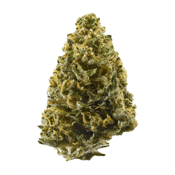 buy northern lights strain online, order northern light strains online,northern lights weed strain